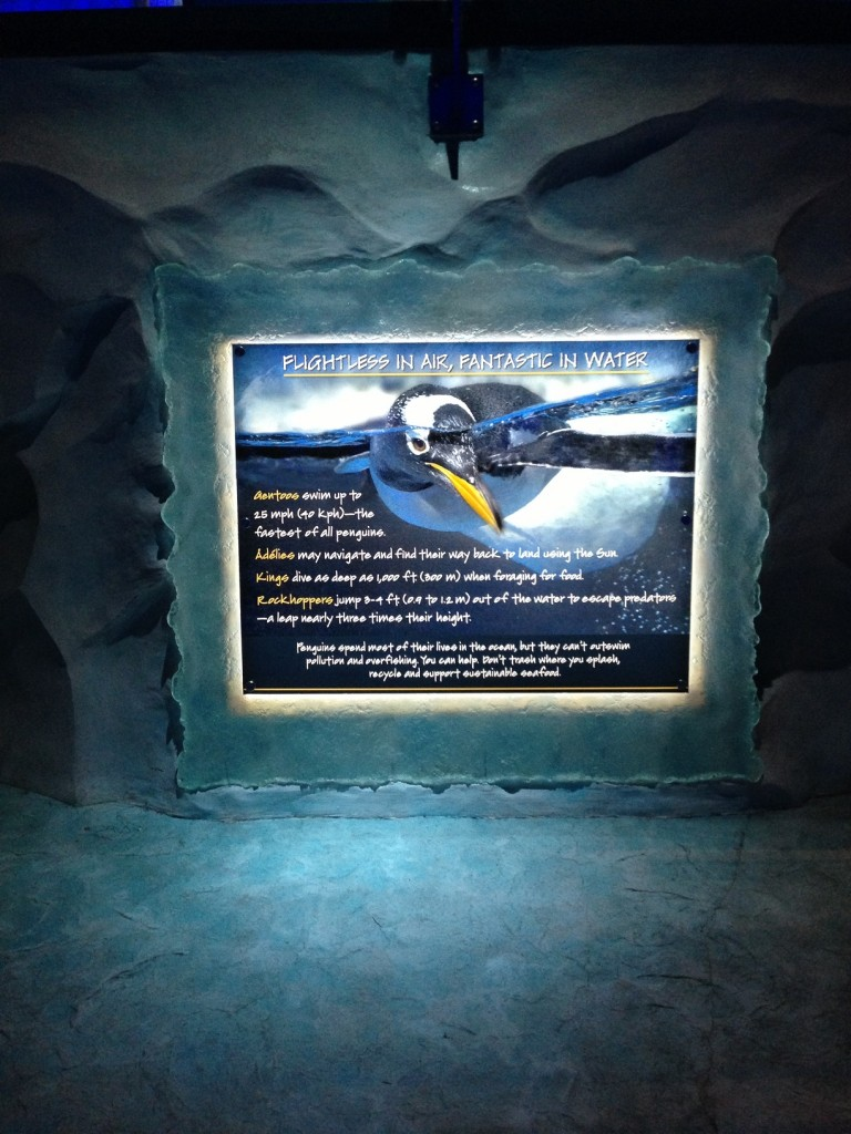 The OAT Review Of SeaWorld's Antarctica Empire Of The Penguins