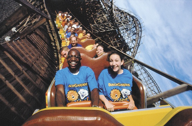 Busch Gardens Tampa To Close Wooden Roller Coaster Gwazi Orlando Attraction Tickets Blog