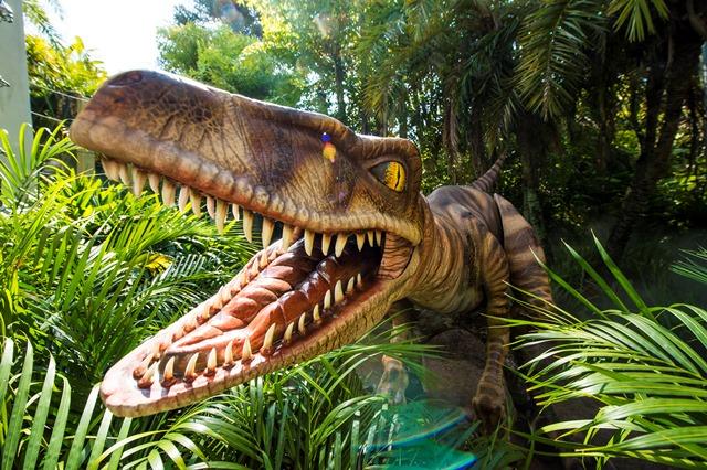 Raptor_LR_tcm70-52811