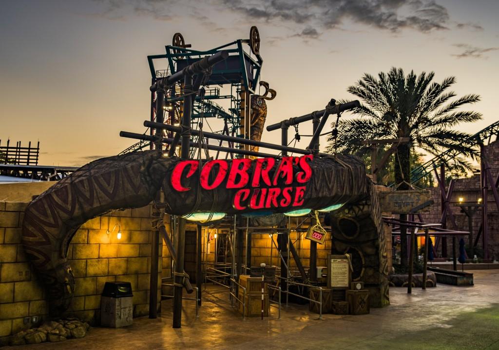 Cobra's Curse - KEY (3)